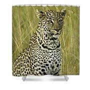 Lovely Leopard Shower Curtain