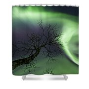 Northern Lights In The Arctic Shower Curtain by Arild Heitmann