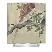 Ohara Koson Shower Curtain