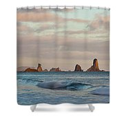 Olympic Peninsula Coast Shower Curtain