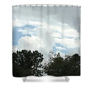 Photograph  Shower Curtain