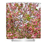 Pink Cherry Tree Shower Curtain