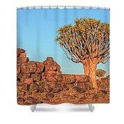 Quiver Tree Forest - Namibia Shower Curtain
