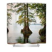 Reelfoot Lake Shower Curtain