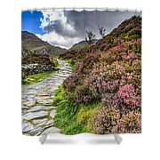 Snowdonia National Park - Shower Curtain
