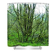 Spring In The Gorge Shower Curtain