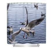 Stover Lake Shower Curtain