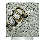 Tofu Sem Shower Curtain