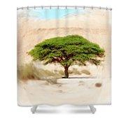 Umbrella Thorn Acacia Acacia Tortilis, Negev Israel Shower Curtain