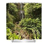 Wailua Falls Shower Curtain