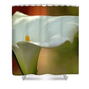 White Calla Shower Curtain