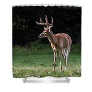 4 X 4 Buck Shower Curtain