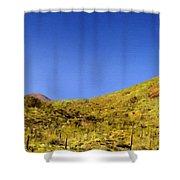 Framed Landscape Art Shower Curtain