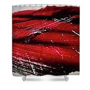 4.0 Reshahr 2 Shower Curtain