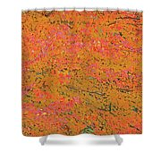 4139 Flaming Maple Shower Curtain