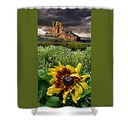 4165 Shower Curtain