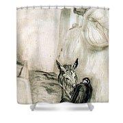 41659 Carlos Saenz De Tejada Shower Curtain