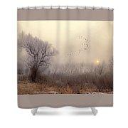 4191 Shower Curtain