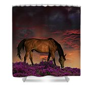 4252 Shower Curtain