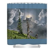4268 Shower Curtain