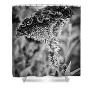 4390- Flower Black And White Shower Curtain