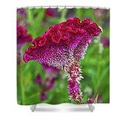 4393- Flower Shower Curtain