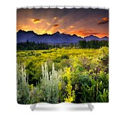 P G Landscape Shower Curtain