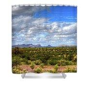 Sonora Desert Shower Curtain