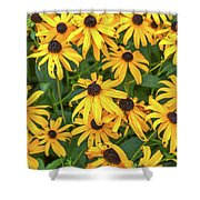 4400- Flowers Shower Curtain