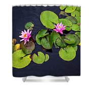 4425- Lily Pads Shower Curtain
