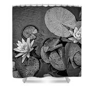 4432- Lily Pads Black And White Shower Curtain