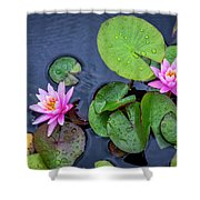 4432- Lily Pads Shower Curtain
