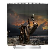 4436 Shower Curtain