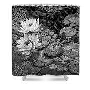 4445- Lily Pads Black And White Shower Curtain