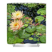 4445- Lily Pads Shower Curtain