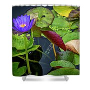 4466- Lily Pads Shower Curtain