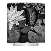 4475- Lily Pads Black And White Shower Curtain