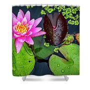 4475- Lily Pads Shower Curtain