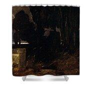 45578 Arnold Bcklin Shower Curtain