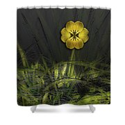 4661 Shower Curtain