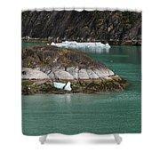 Alaska_00047 Shower Curtain