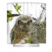 4799 Shower Curtain