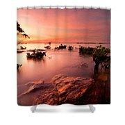 Plan E Landscape Shower Curtain