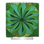 4th Mandala - Heart Chakra Shower Curtain