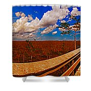 4x1 Everglades Panorama Number Two Shower Curtain