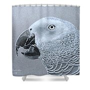 African Grey Parrot Shower Curtain