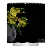 Alstroemeria Flower Shower Curtain