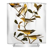 Audubon: Warbler Shower Curtain