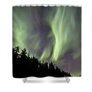Aurora Borealis Over Trees, Yukon Shower Curtain