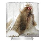 Beautiful Dog Shower Curtain
